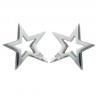 Distinctive Silver Earrings